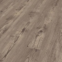 KRONOTEX DYNAMIC D4163 BOUGH PINE