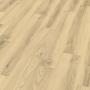 Laminátová podlaha EGGER BASIC EBL008 dub alberta polar 8mm AC3/31