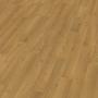 Laminátová podlaha EGGER BASIC EBL022 dub colmar 8mm AC3/31