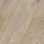 Iris Oak / VENUS D 4905